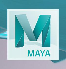 Szkolenie Maya – Topologia